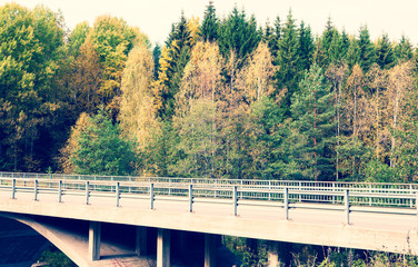 Motor way in autumn