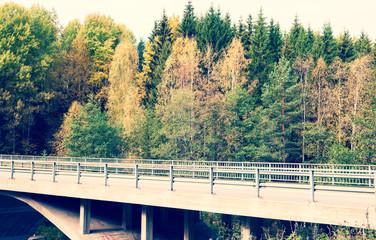 Motor way in autumn