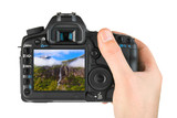 Fototapety Hand with camera and Norway travel photo