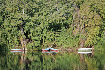 Barca  en el rio