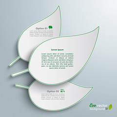 3 White Leaves Infographic
