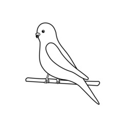 Budgerigar- logo for exotic bird business