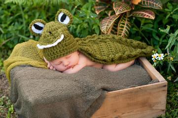 Newborn Baby Wearing an Alligator Costume