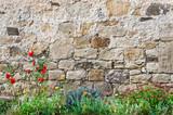 Fototapety Mauer Blumen Schlossgarten
