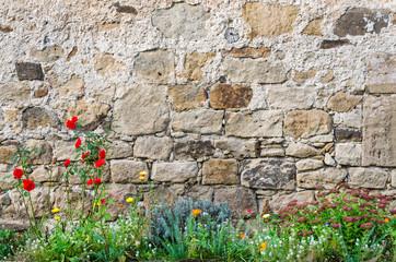 Mauer Blumen Schlossgarten
