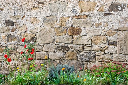 Hintergrund: Pittoreske, historische Steinmauer  mit Blumen im Schlossgarten - 71469987