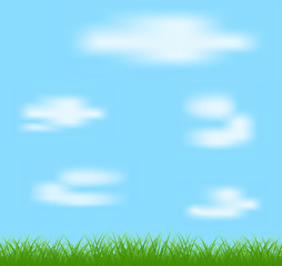 Natural green grass and blue background