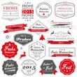 Button Siegel Weihnachten frohes Neues Jahr 2015 Neujahr