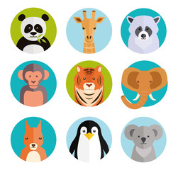 Cute animals in colored round badges