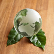 earth globe with leafs on wood