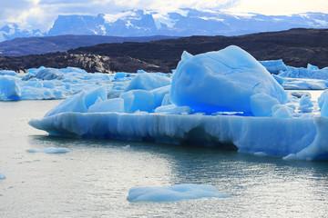 Iceberg at Upsala Glacier