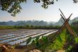 canvas print picture - Landwirtschaft in China