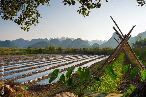 canvas print picture Landwirtschaft in China