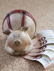 cochon et argent billets d'euro
