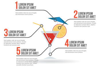 Alcohol drink infographic, vector illustration