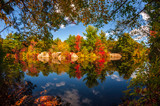 Fototapety Colors of fall in New England