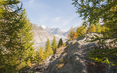 Riederalp, Dorf, Aletschwald, Wallis, Herbst, Schweiz