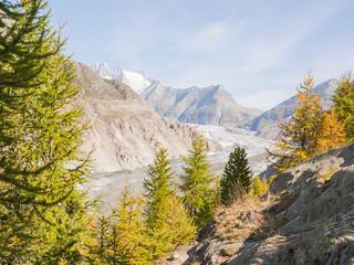 Riederalp, Riederfurka, Dorf, Aletschwald, Gletscher, Schweiz