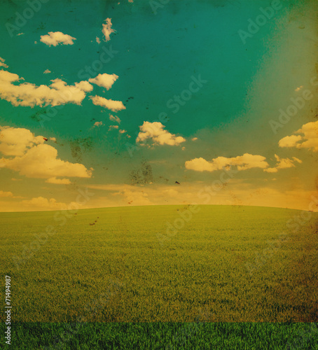 sky and grass field background