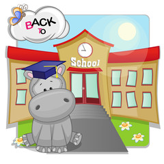 Hippo and school