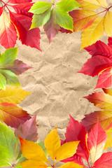 Autumn leaf frame on paper