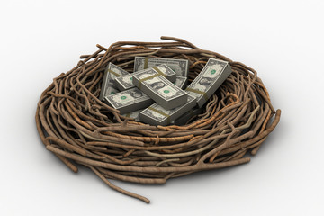 Currency note in bird nest