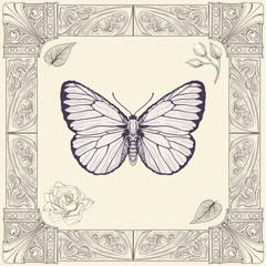butterfly and rose drawing