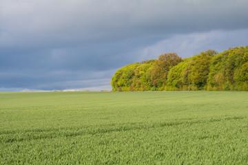 Unwetter im Frühjahr bei Freyburg/Unstrut