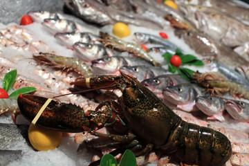 Fresh lobster at market