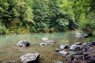 The river Tara in Montenegro