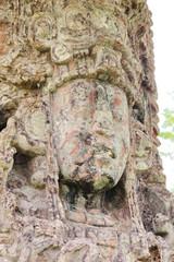 Copan, Honduras: Stela H, beautifully carved in 730 AC