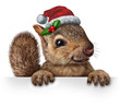 canvas print picture - Holiday Squirrel
