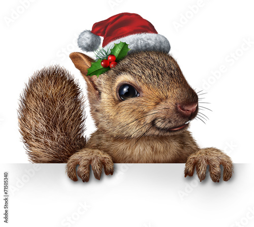 canvas print picture Holiday Squirrel