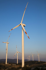 Wind energy turbines produce clean electric energy