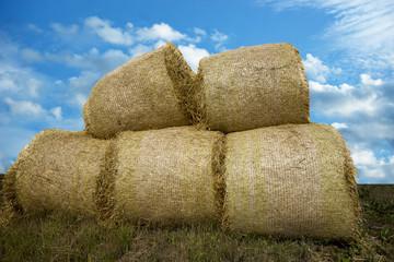 Heap of hay bales