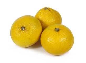 tangerines on white background
