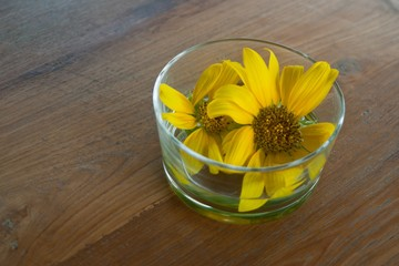 yellow flower in glass.