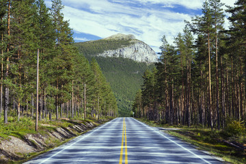Road in beautiful landscapes