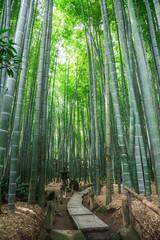 鎌倉 竹の庭
