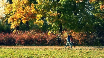 People walk in the autumn park