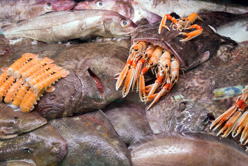 Raw Goosefish and other seafood