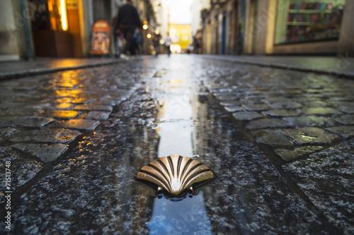 Foto op Canvas Mediterraans Europa Symbol of the camino de santiago