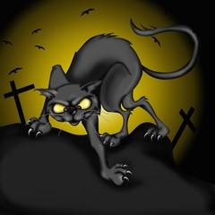 gatto nero nella notte