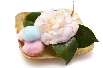pink camellia and colorful cottons