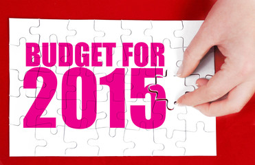 buget for 2015