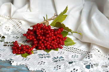 Still life with a guelder-rose
