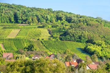 Wangen, village de la Route de Vins en Alsace, Bas Rhin