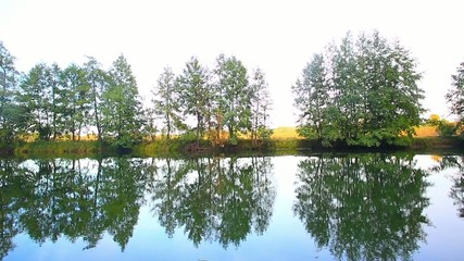 trees are reflected in water