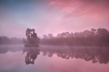 atmospheric misty sunrise over forest lake