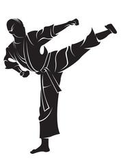 Karate fighter